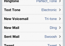 Set Custom Alert Tones on iPad, iPhone 4