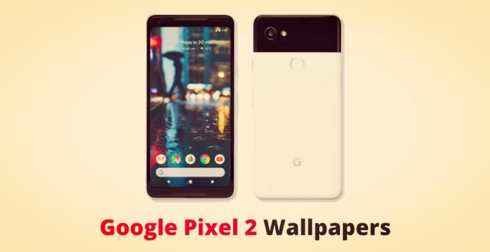 Download Google Pixel 2 XL Stock Wallpaper [QHD+ Resolution]